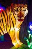 Chinese Lantern Festival New Year tiger lantern. ALBUQUERQUE, NEW MEXICO, USA- NOVEMBER 12,2017: Chinese Lantern Festival lit up at night to celebrate the Royalty Free Stock Images