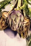 Alcachofa del vintage Fotos de archivo