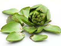 Alcachofa y hojas dispersadas imagenes de archivo