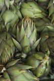 alcachofas Imagenes de archivo