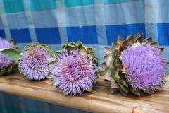 Alcachofas púrpuras, mercado de los granjeros, Francia Foto de archivo libre de regalías