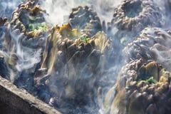 Alcachofas que cuecen en los carbones calientes Fotos de archivo