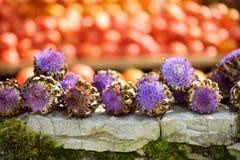 Alcachofras e abóboras alaranjadas decorativas na exposição no mercado dos fazendeiros em Alemanha Abóboras decorativas alaranjad Fotografia de Stock