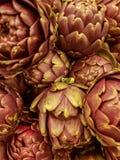 Alcachofras frescas imagem de stock royalty free