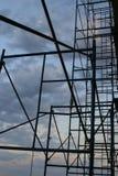 Alcançando os céus Imagem de Stock