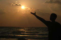Alcance ao sol Imagem de Stock Royalty Free