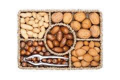 Alcance da cesta em vários tipos das porcas nos shell Imagens de Stock Royalty Free