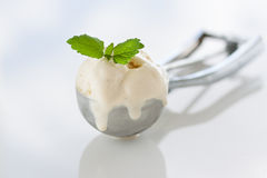 Alcance del helado hecho en casa de vainilla en una cuchara del metal Foto de archivo libre de regalías