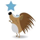 Alcance do Hedgehog para a estrela Imagens de Stock