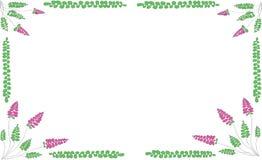 Alcance floral en un fondo blanco Imagen de archivo libre de regalías