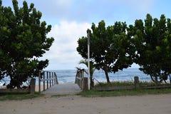 Alcance a natureza da praia Imagem de Stock Royalty Free