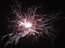 Alcance negro de las raíces libre illustration