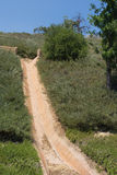 Alcantarilla del agua en la ladera plantada Foto de archivo libre de regalías