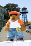 alcatraz熊岛长毛绒 库存照片