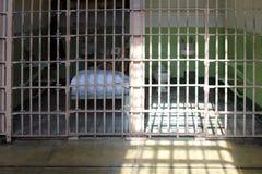 Alcatraz Gefängniszellen stockbild
