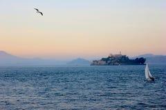 Alcatraz-Insel mit Seemöwenfliegen und einem Boot Lizenzfreies Stockbild