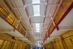 Alcatraz-Oberlederzellen Lizenzfreie Stockfotografie