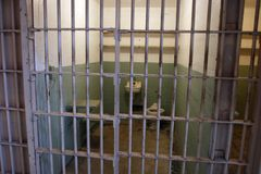Alcatraz Prison Cell Stock Photography
