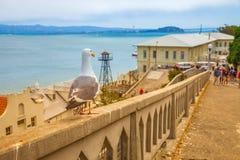 Alcatraz San Francisco Stock Photos
