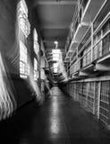 Alcatraz spettrale Immagini Stock