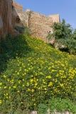 Alcazaba Fortress in Malaga Stock Photography