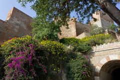 Alcazaba Fortress in Malaga Royalty Free Stock Photo