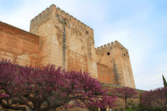 Alcazaba, Granada Spain Royalty Free Stock Photos