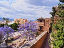 Alcazaba in Malaga, Spain Stock Photography