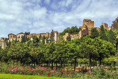 Alcazaba of Malaga, Spain Stock Photo