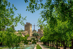 The Alcazar de los Reyes Cristianos view from the jardines, Cord. The jardines, royal garden of the Alcazar de los Reyes Cristianos, Cordoba, Spain, Europe Stock Image
