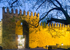 Alcazar de los Reyes Cristianos in winter. Cordoba Royalty Free Stock Photos