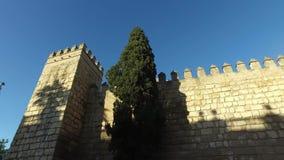Alcazar des murs de Séville et de la cathédrale de Séville banque de vidéos