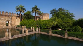 Alcazar en Córdoba, España almacen de video