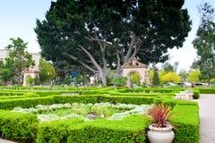 Alcazar Gardens in Balboa Park, San Diego. Stock Images