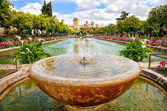 Alcazar Gardens Cordoba Stock Photos