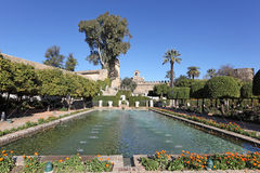 Alcazar gardens in Cordoba, Spain. Gardens in the Alcazar of Christian Monarchs in Cordoba, Andalusia Spain Stock Photos