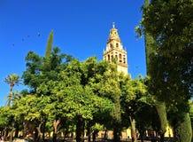 Alcazar kasztel cordoba, Hiszpania fotografia stock