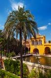 alcazar uprawia ogródek istnego Seville Spain zdjęcia stock