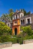 alcazar uprawia ogródek istnego Seville Spain zdjęcie royalty free