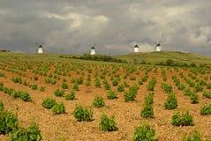 Alcazar windmill 01 stock photos