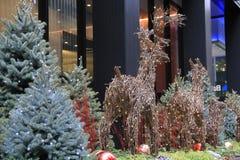 Alces de la Navidad con las luces Foto de archivo