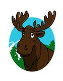 Alces ou alces dos desenhos animados Fotos de Stock Royalty Free