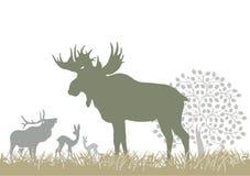Alces y ciervos por el árbol Fotografía de archivo
