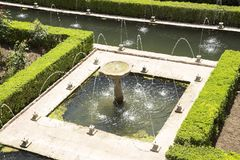 Alchambra garden royalty free stock images