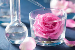 Alchemy and aromatherapy with rose flowers and chemical flasks Stock Image
