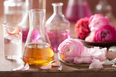 Alchemy and aromatherapy set with ranunculus flowers and flasks Royalty Free Stock Images