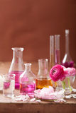 Alchemy and aromatherapy set with ranunculus flowers and flasks Royalty Free Stock Photo