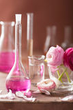 Alchemy and aromatherapy set with ranunculus flowers and flasks Stock Photography
