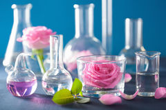 Alchemy and aromatherapy set with rose flowers and chemical flas. Ks Stock Image