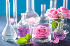 Alchemy and aromatherapy set with rose flowers and chemical flas Stock Photos